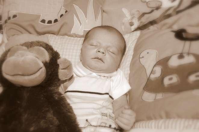 新生儿掉肚脐会哭闹吗新生儿宝宝肚脐什么时候掉